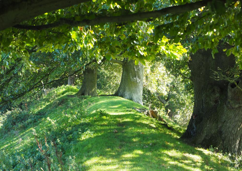 Ludlow Shropshire UK Caynham