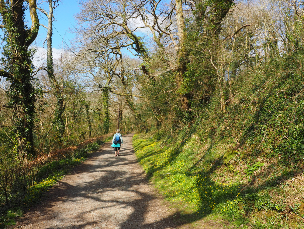 Pembrokeshire Wales Amroth