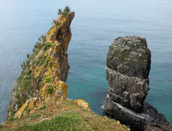 Pembrokeshire Wales Castlemartin