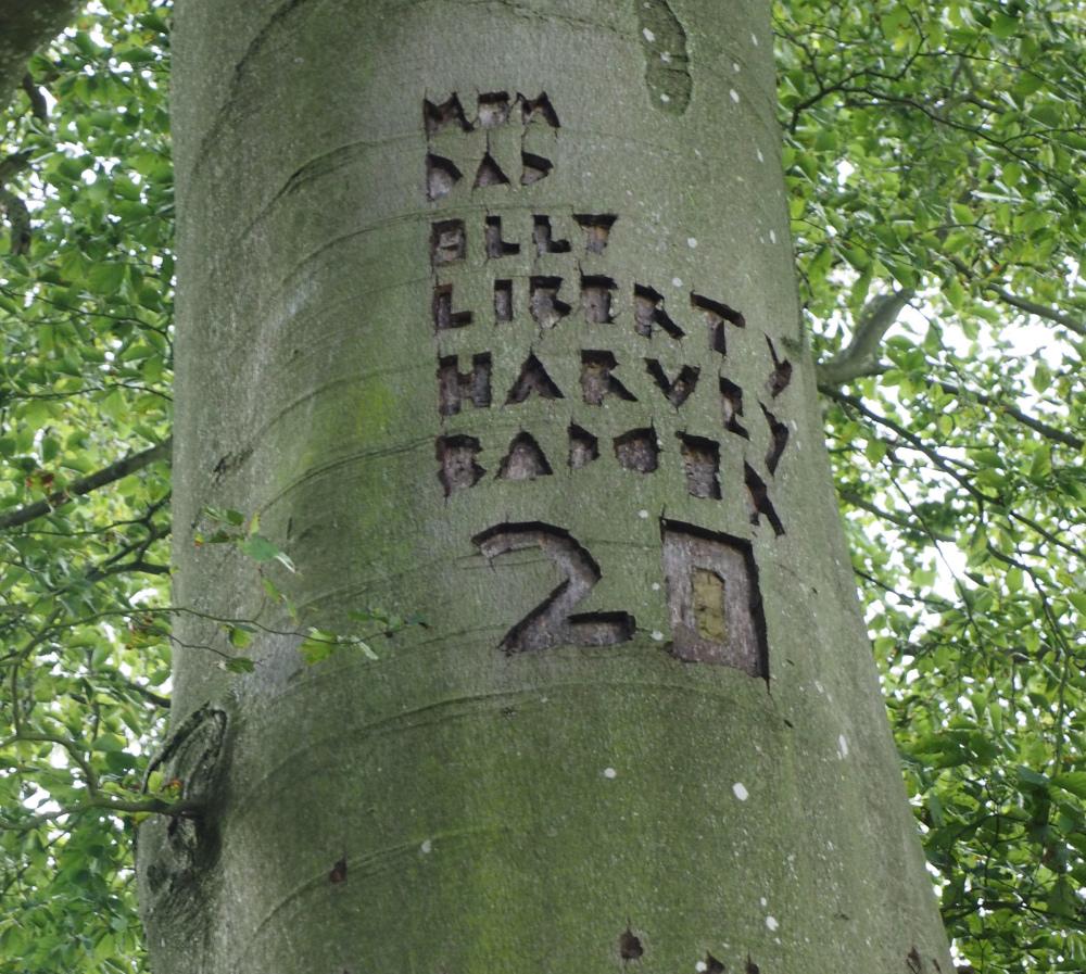 Ludlow Shropshire UK familieS Tree