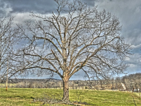 HDR - On the Farm