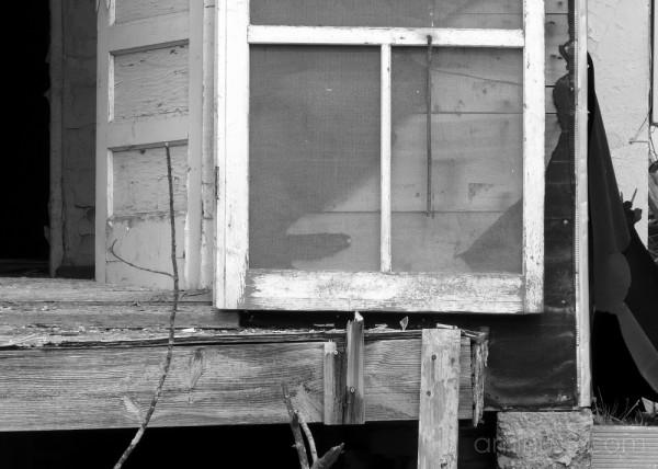 Old Back Door