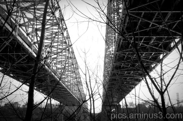 Bridges - Black & White