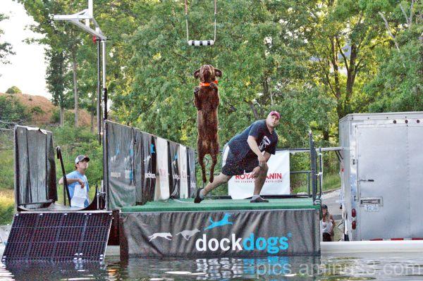 Dock Dogs Series