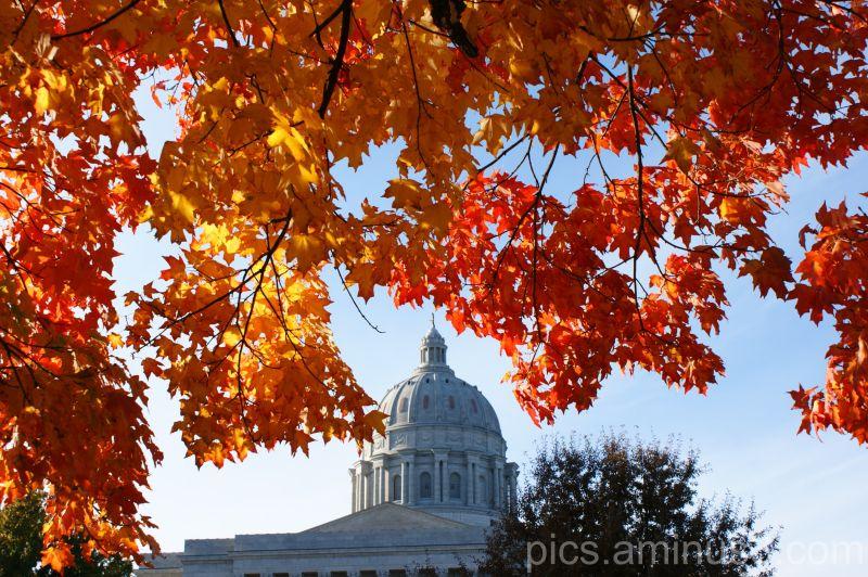 Capital City Color