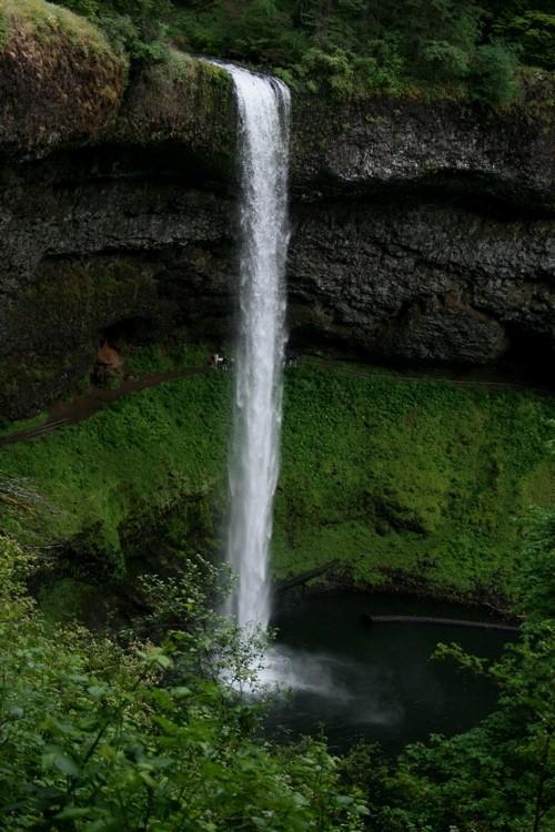waterfall at silver falls