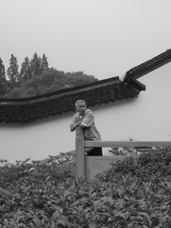 Tea Farmer, Hangzhou