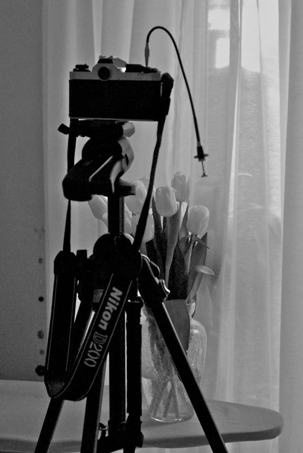 The Ironing