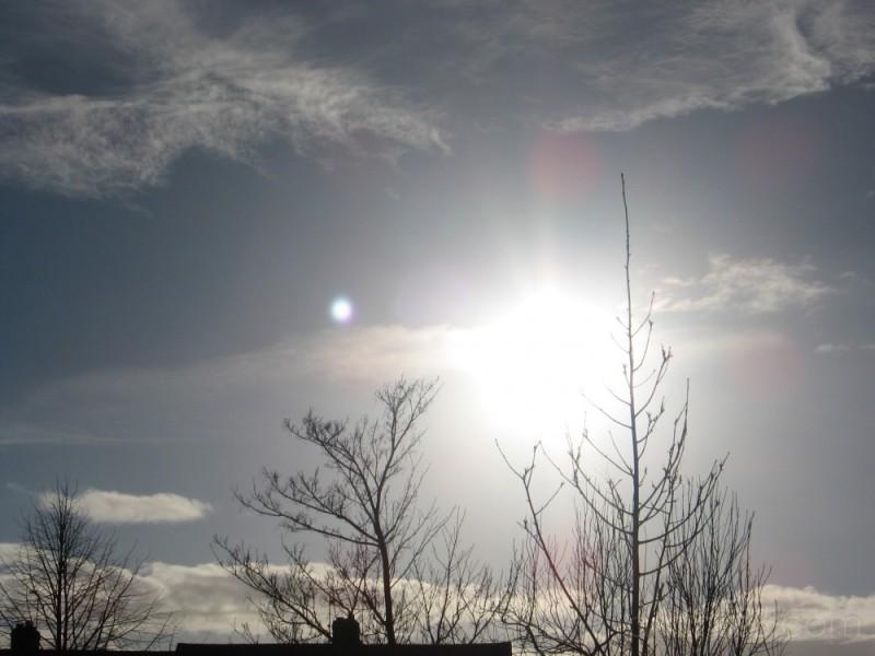 16 Jan 2008 - Hey Sunshine!