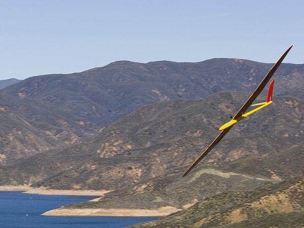Radio Controlled Glider