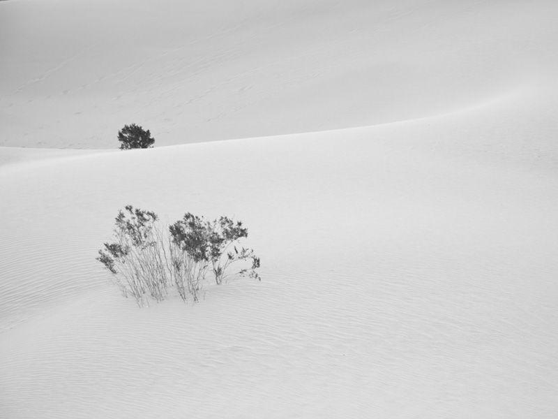 Mesquite Flat Sand Dunes 3