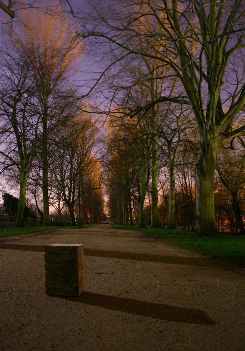 Christ Church Meadows at 11pm under a full moon