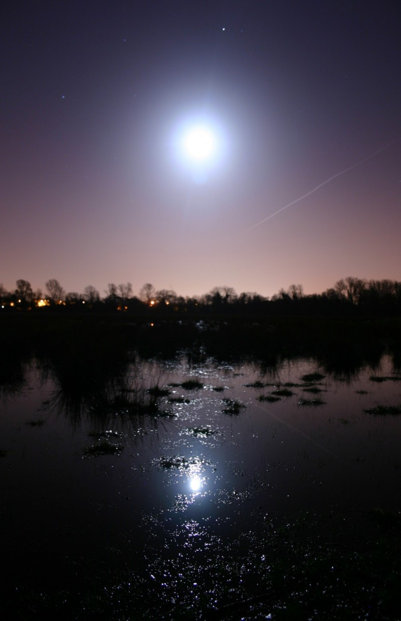 Moon light reflected on Christ Church Meadow