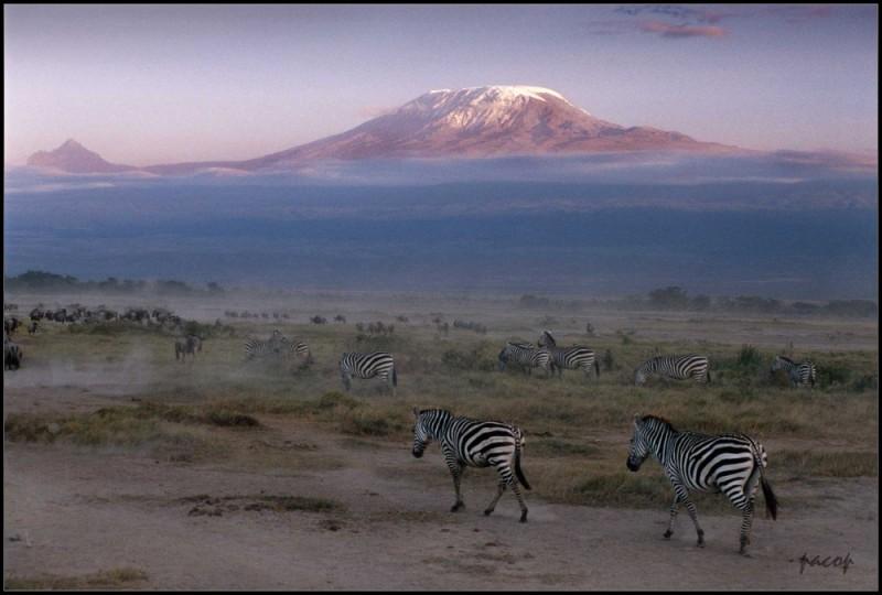 Atardecer frente al Kilimanjaro