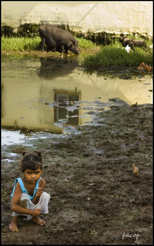 Niños del Slum (Retratos de La India)