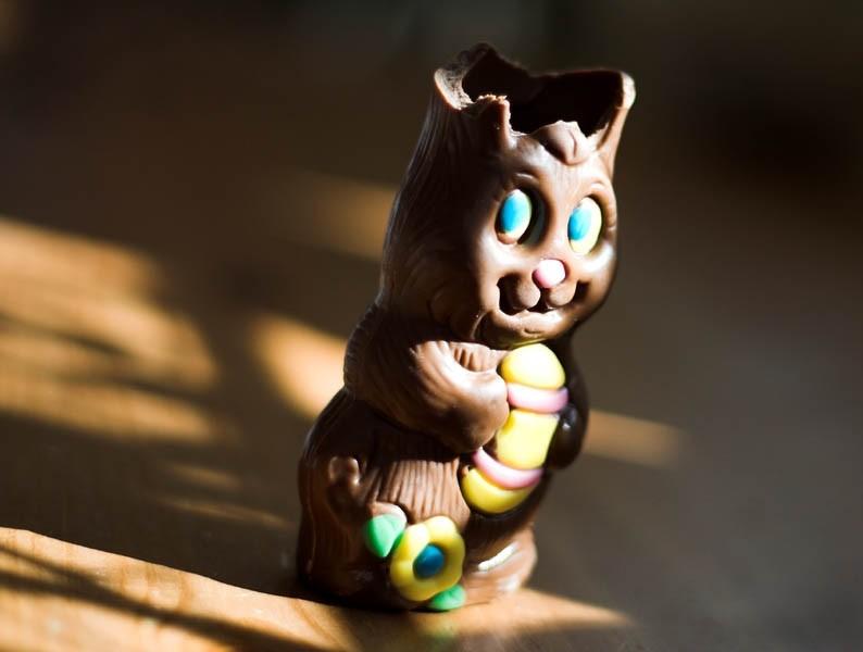 chocolate bunny no ears