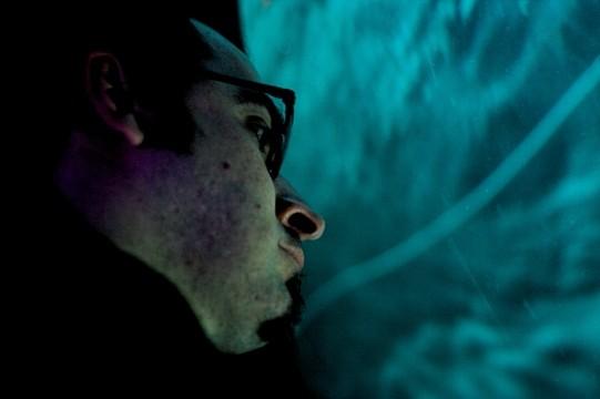 looking at the aquarium