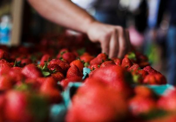 lots of strawberries