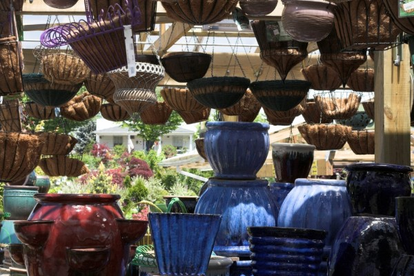 pots and hanging baskets