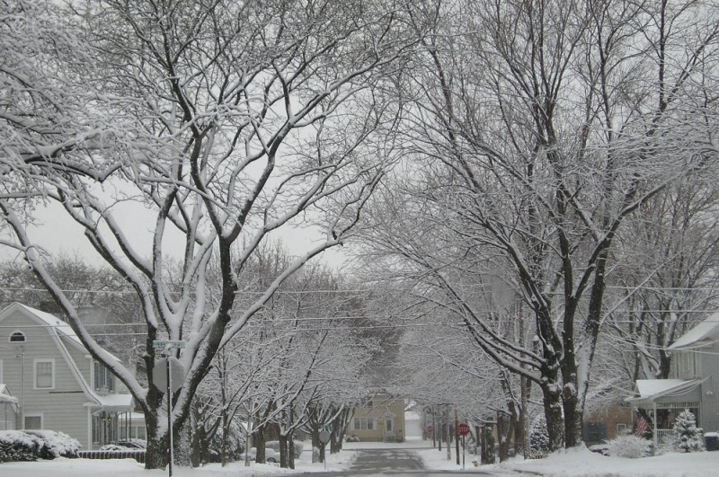 Harding Avenue
