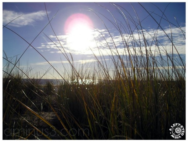 Dunes and Prairie Grasses at Lake Michigan