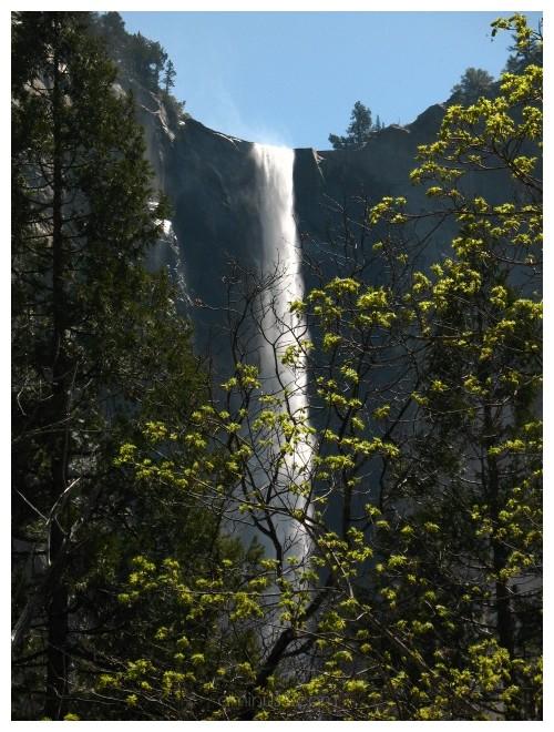 Waterfall at Yosemite