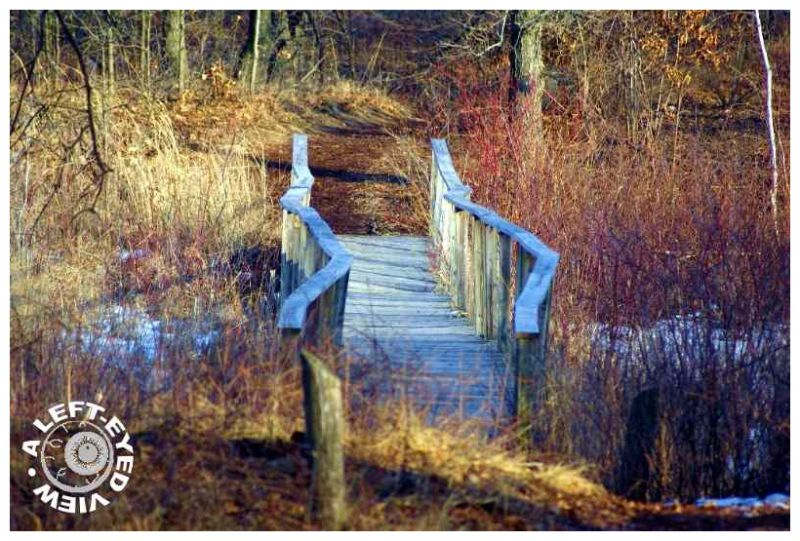 Build Bridges Instead of Walls...