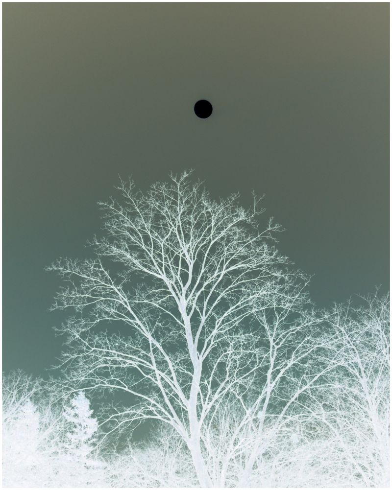 hoarfrost, lunar eclipse, A Left-Eyed View