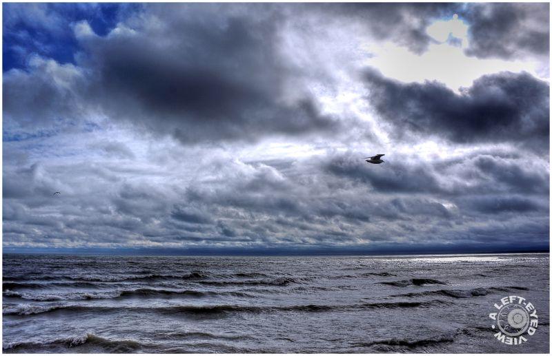 clouds, Waukegan, waves, Lake Michigan, seagull