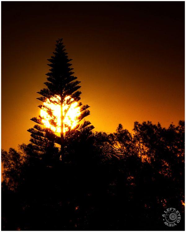 Sunrise. Fort Myers Beach, Florida