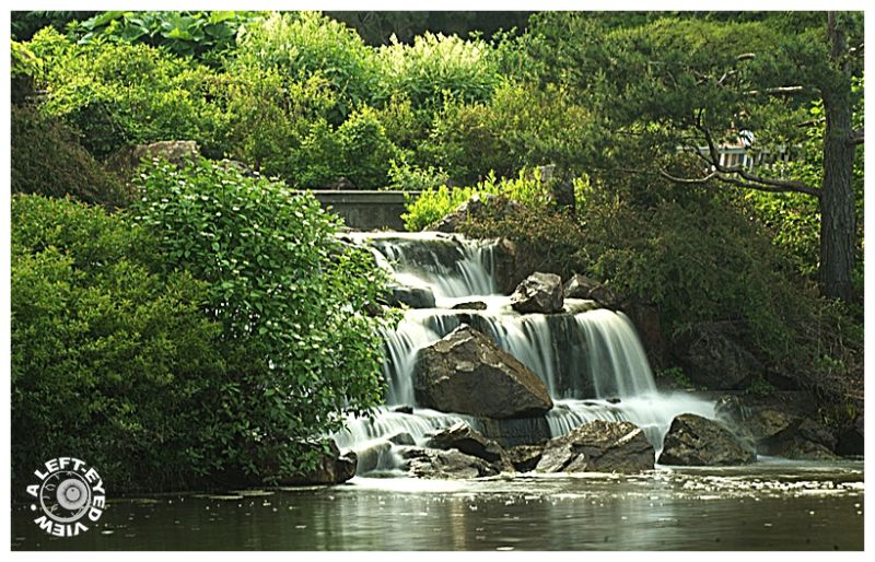 "Waterfall, ""Chicago Botanic Garden"""