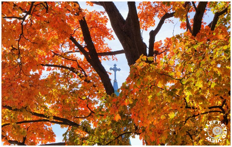 Autumn, Fall, Episcopal, cross, steeple, Waukegan,