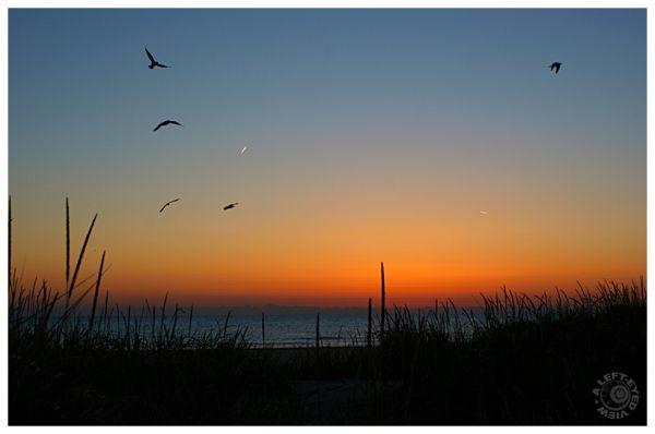 Pre Dawn Sunrise