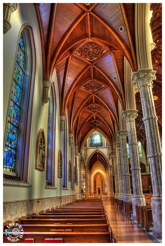 """Ribbed Vault"", ""Holy Name Cathedral"""