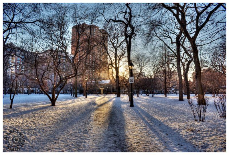 """Washington Square Park, ""A Left-Eyed View"""
