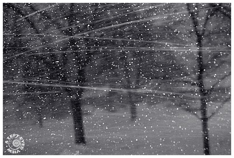 """""""Blizzard of 2011"""", """"A Left-Eyed View"""", snow, wind"""