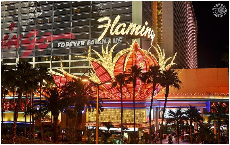 """Flamingo Resort"""