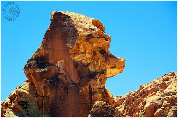Poodle Rock