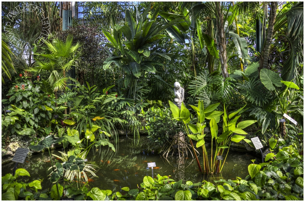 """""""Lincoln Park Conservatory"""", """"A Left-Eyed View"""""""