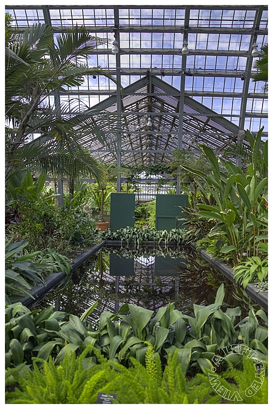 """""""Garfield Park Conservatory"""", """"A Left-Eyed View"""""""