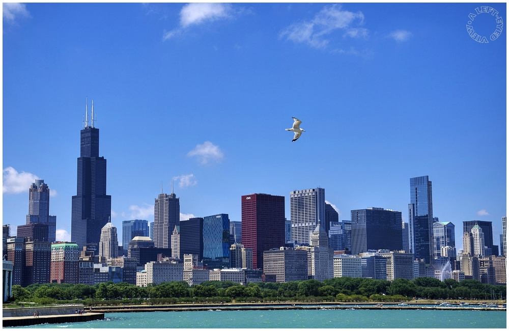 "Chicago Skyline, ""A Left-Eyed View"""