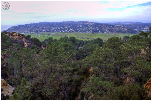 View from Torrey Pines Lodge