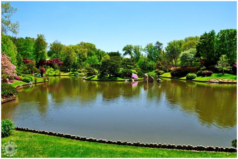 """A Left-Eyed View"", Sabourin, japanese garden"