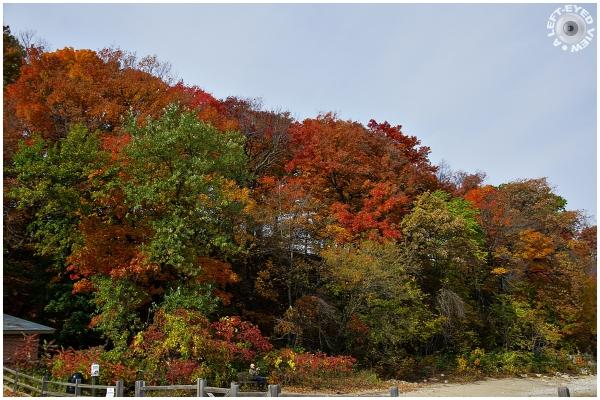 Autumnal Bluff