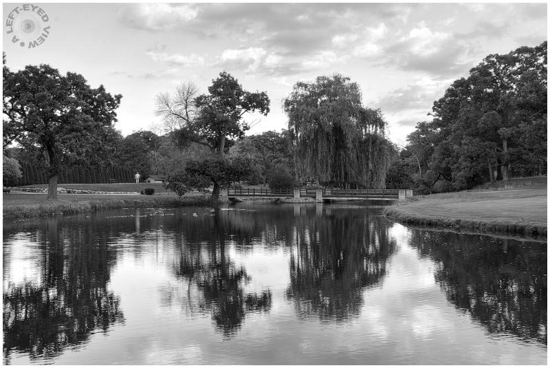 """""""A Left-Eyed View"""", Sabourin, golf"""