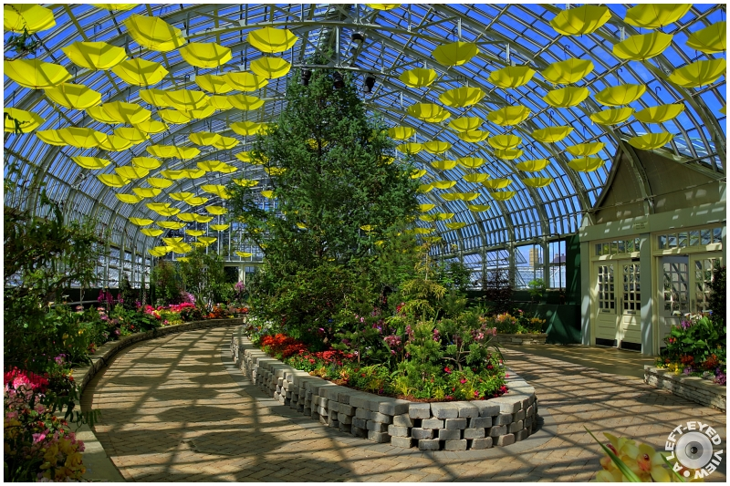 Show House of the Garfield Park Conservatory #3