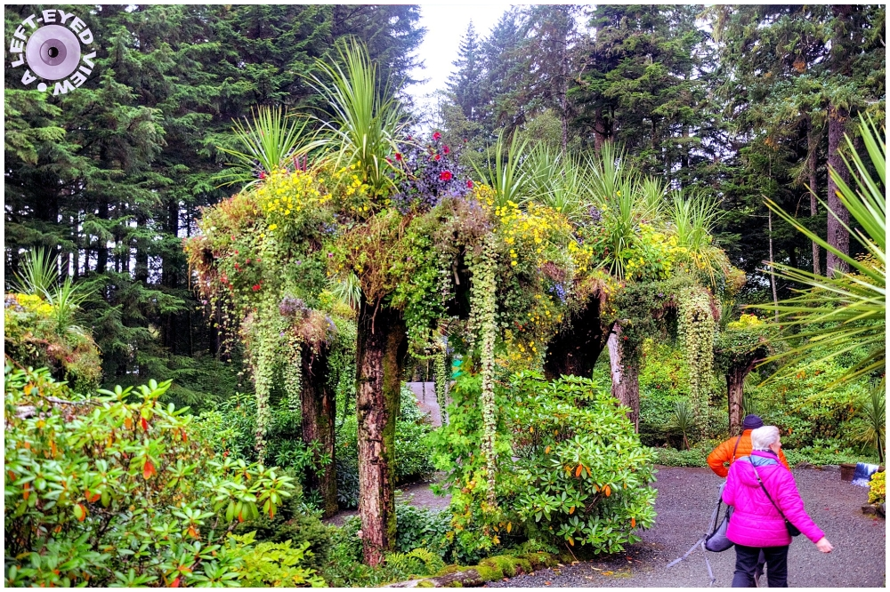 Glacier Gardens, Sabourin