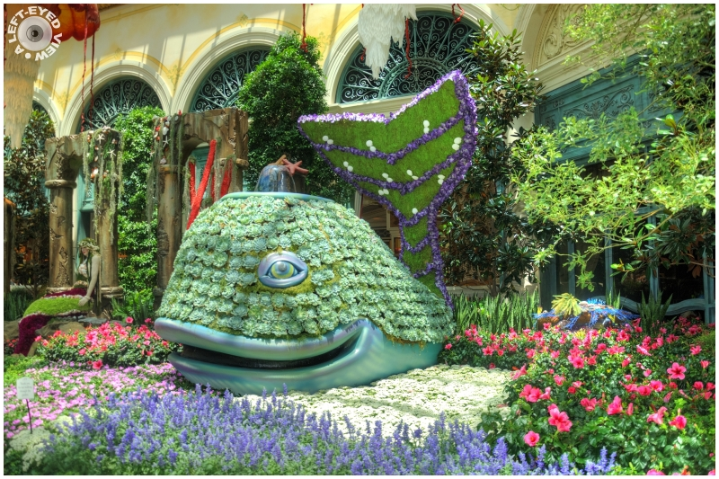Bellagio Conservatory, Sabourin, A Left-Eyed View