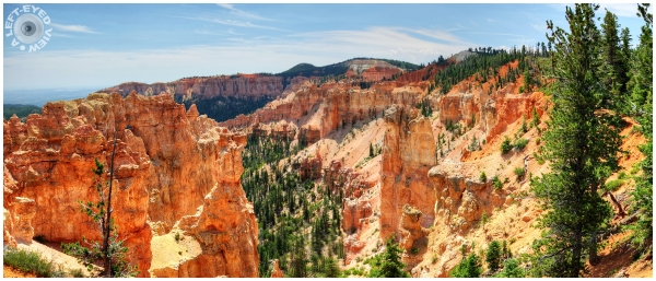 Black Birch Canyon at Bryce Canyon