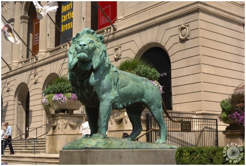 """Art Institute"", lion, ""A Left-Eyed View"", Kemeys"